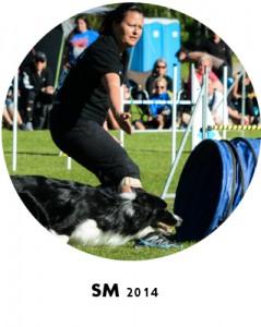 SM2014