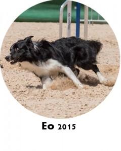 eo2015