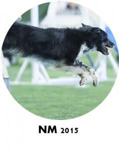nm2015